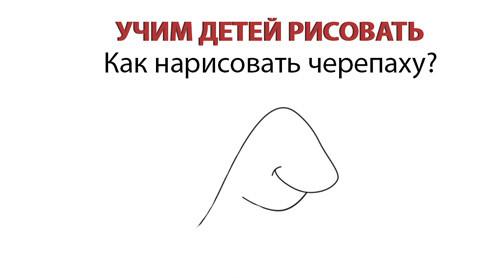 рисование черепашки голова